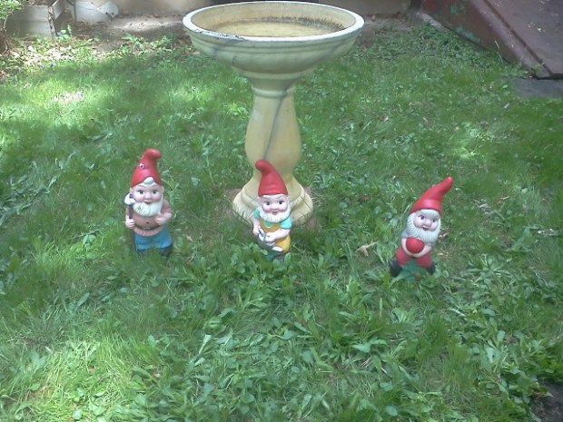 Gnomes Guarding the bird bath
